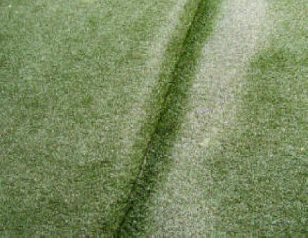 Synthetic grass rucking or rippling