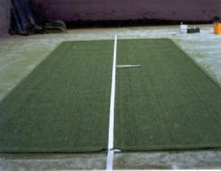 Synthetic grass replacement